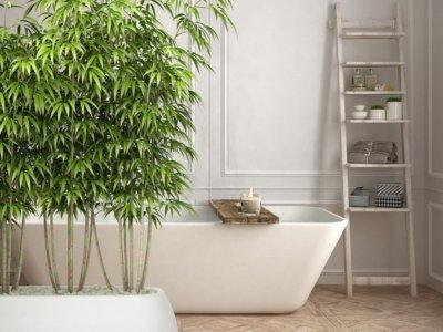 Feng Shui'ye Göre Banyo Düzenlemesi Nasıl Yapılır?